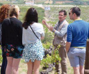 excursiones y talleres en marbella bb events